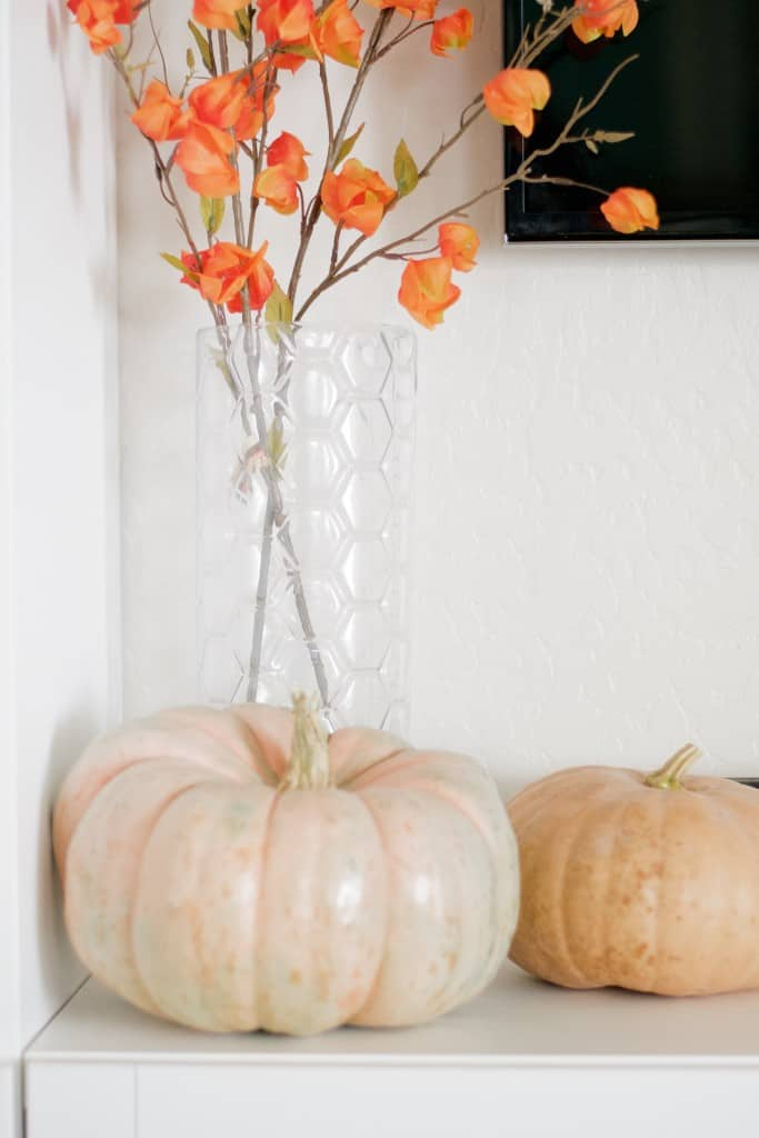 Early Fall Home Tour - 9